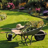 Garden Clearance Southnorwood