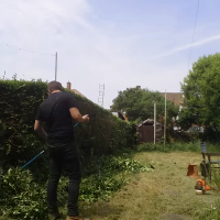 Garden Clearance Southnorwood