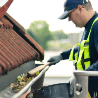 Gutter Cleaning Southnorwood