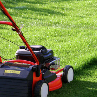 Lawn Mowing Southnorwood